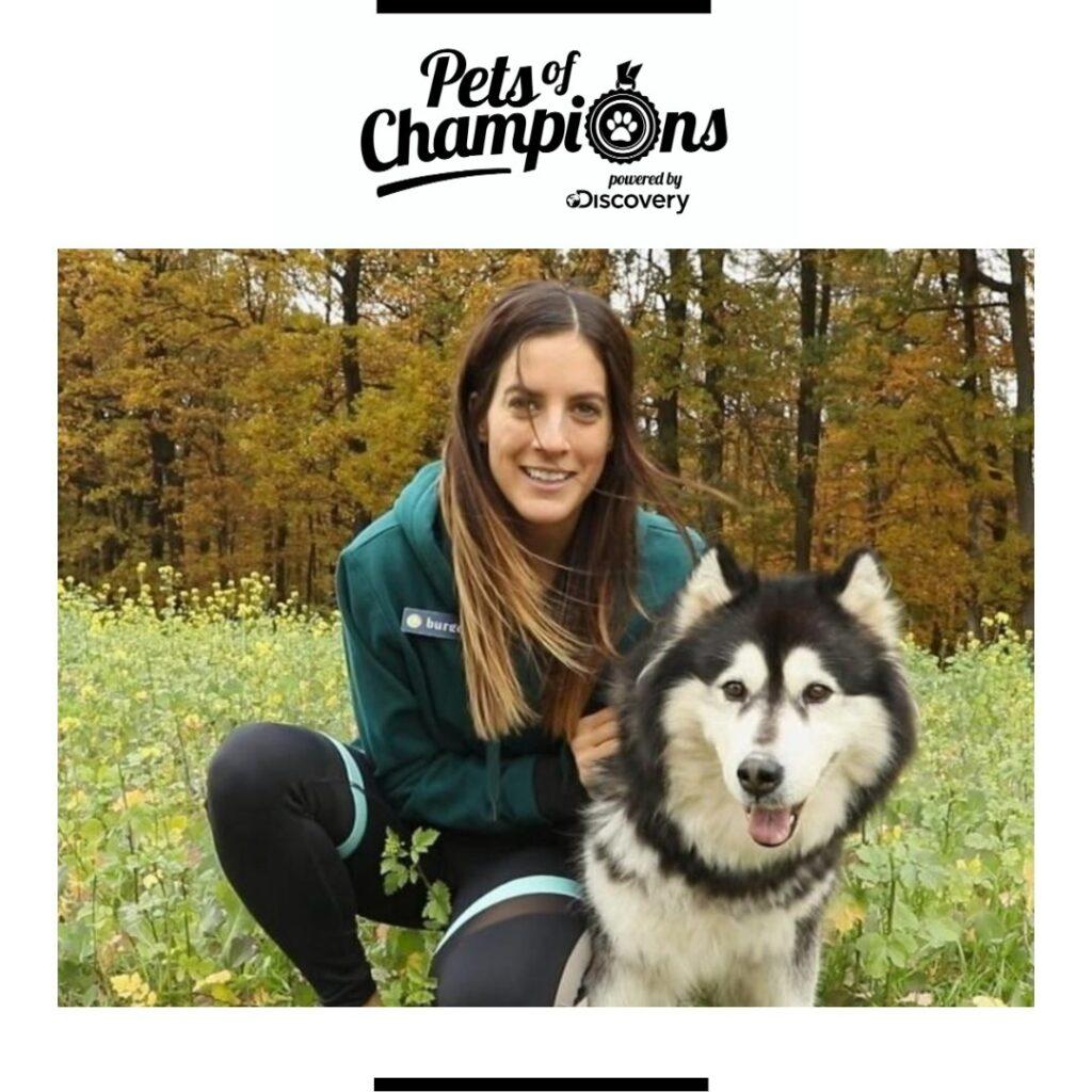 Pets of Champions