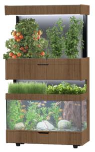 Grove Ecosystem