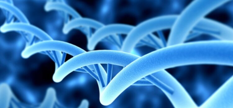 Genetics - Pandora Box